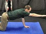 Reach Roll Lift Plank