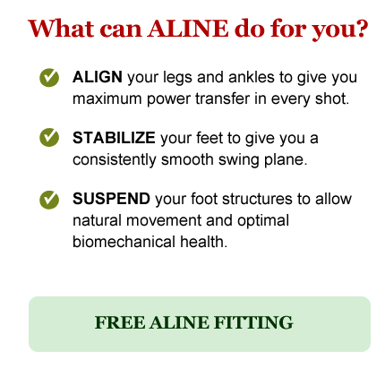 What can ALINE do for you