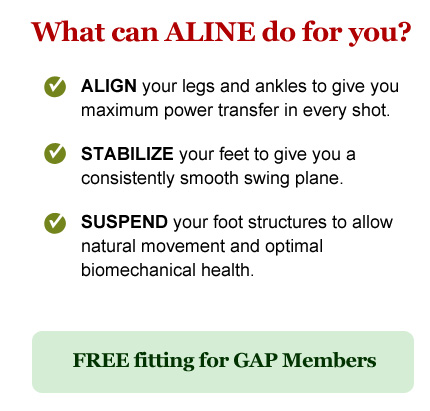 What can ALINE do for you?