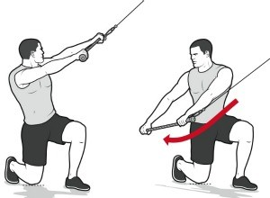 Half-Kneeling Chops with Rotation